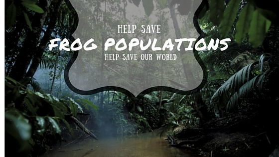 Help Save frog populations